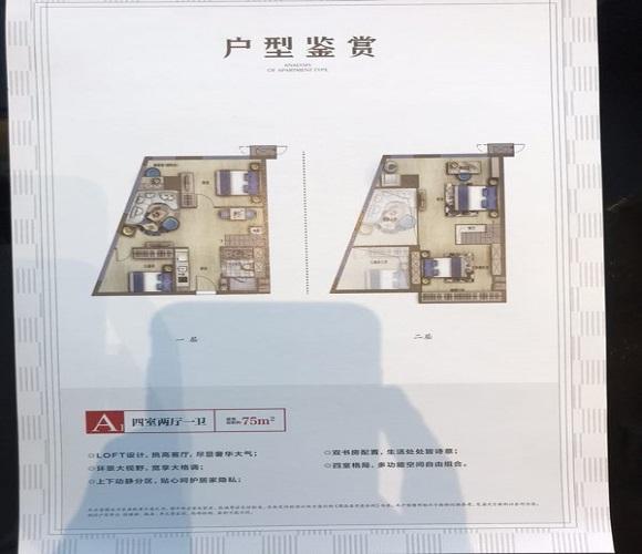 汉港武林汇户型-小柯网