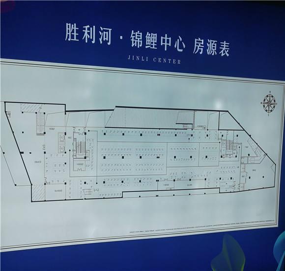 胜利河锦鲤中心户型
